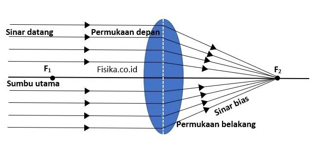 Cara Kerja Lensa Cembung