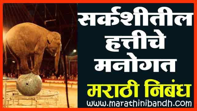 सर्कशीतील हत्तीचे मनोगत | Sarkashitil Hattiche Manogat Marathi