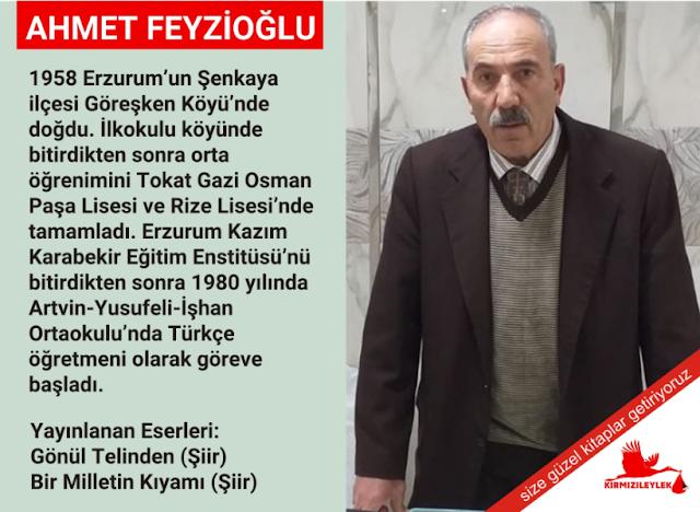 Şair Ahmet Feyzioğlu