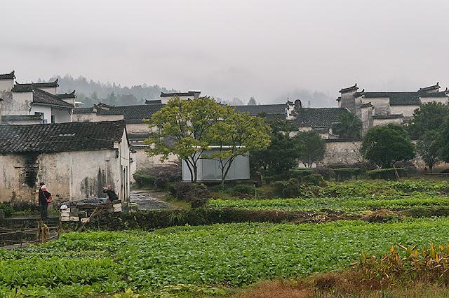 Maisons et champs cultivés à Xidi