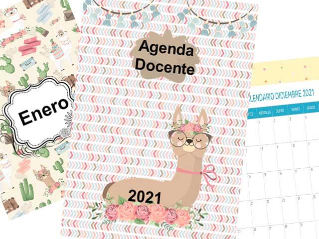 Agenda Docente 2021 - Llama - 177 páginas