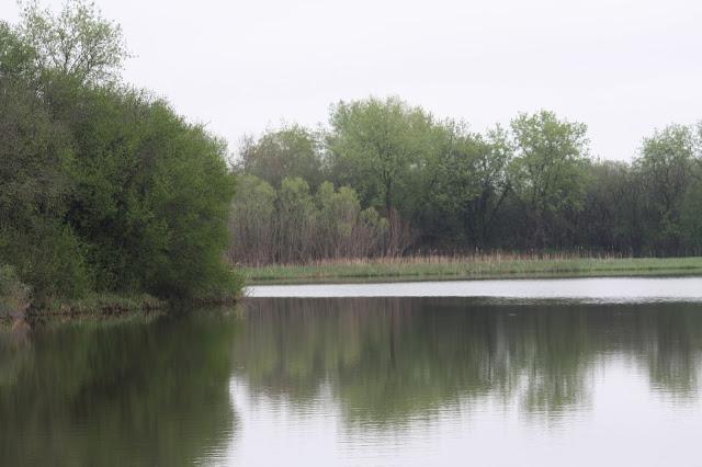 Penny Road Pond in Barrington, Illinois