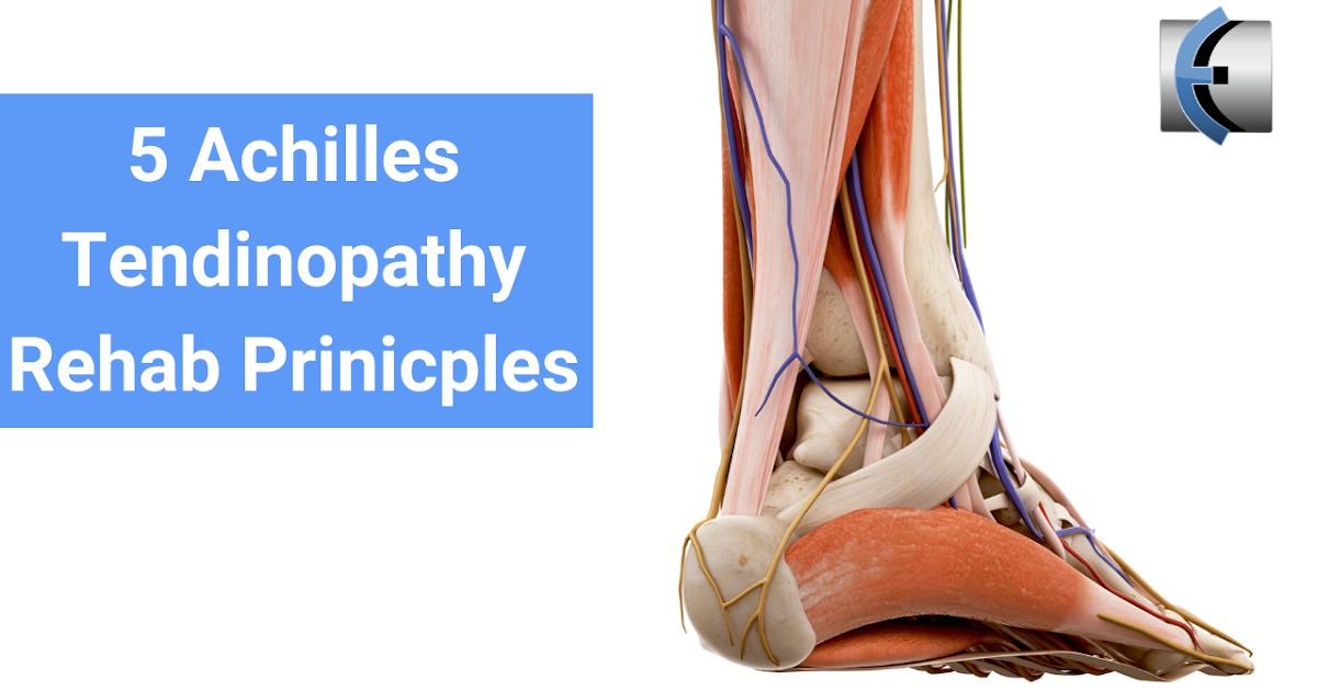 Photo of Top 5 Fridays! 5 Achilles tendinopathy rehabilitation remedies | Modern Manual Therapy Blog