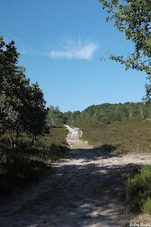 Chemin de la Vallée chaude, la bien nomée, Trois Pignons, (C) 2016 Greg Clouzeau