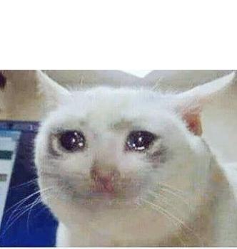 Plantillas Para Memes Gato Triste