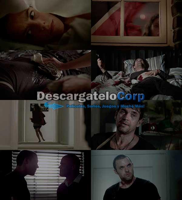 La Casa del Tigre DVDRip Latino