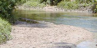 Pengertian Tanah Aluvial
