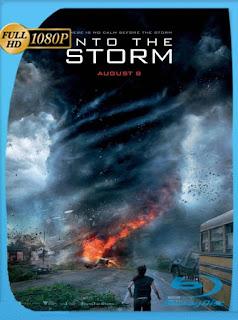En el ojo de la tormenta (2014) HD [1080p] Latino [GoogleDrive] DizonHD