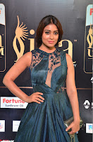 Shriya Saran in Beautiful Transparent Dark Gown IIFA Utsavam Awards 2017 073.JPG