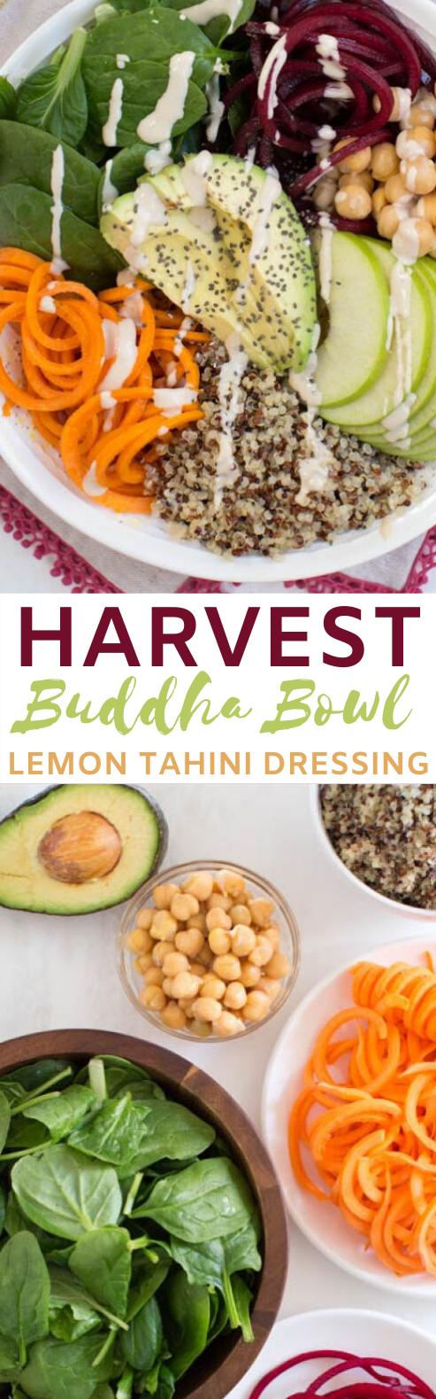 Harvest Buddha Bowl with Lemon Tahini Dressing #vegan #dinner #plantbased #glutenfree #healthy