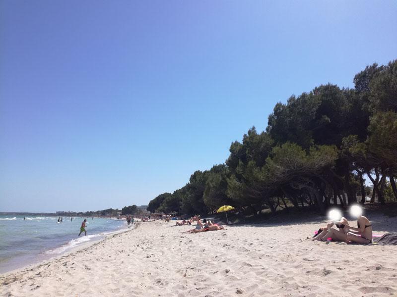 Port d'Alcudia, Mallorca