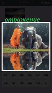 идет слон с погонщиком которые отражаются на водной поверхности