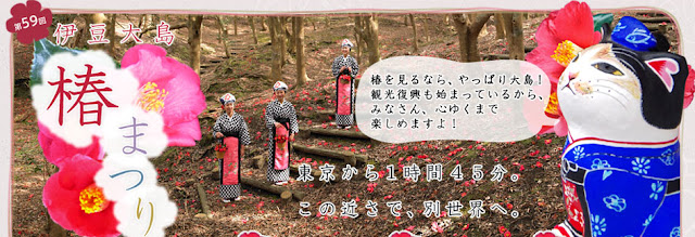 Tsubaki Matsuri (Camellia Festival), Oshima island, Tokyo