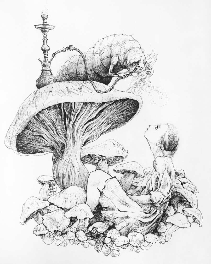 14-Alice-in-wonderland-Matthew-McHugh-Animal-Drawings-and-Surreal-Interpretations-www-designstack-co