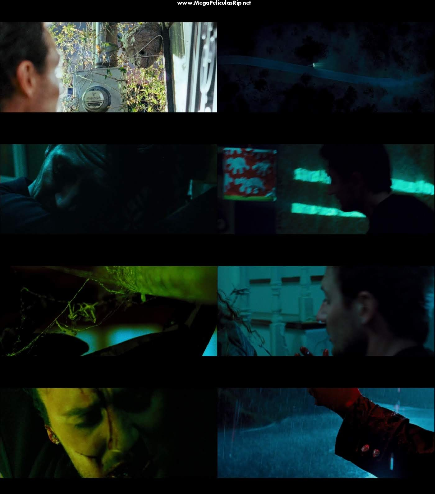 The Collector 1080p Latino