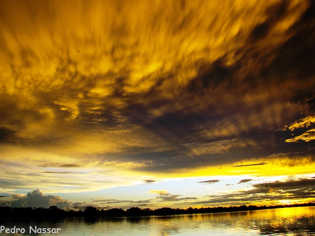 Foto de Pedro Nassar do Lago Mamirauá na Amazônia