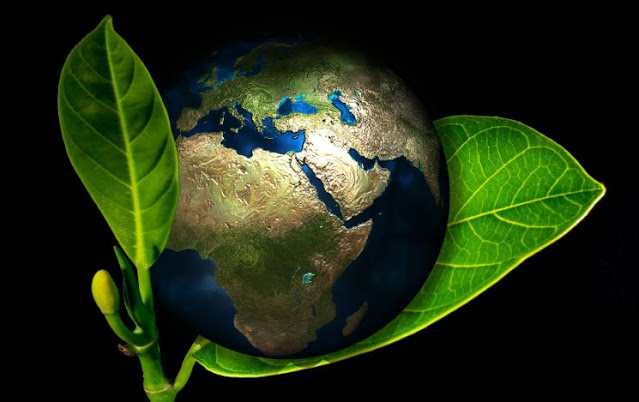 going green small business environmental impact eco-friendly company sustainability