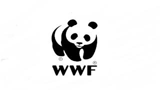 WWF Pakistan Jobs 2021 in Pakistan