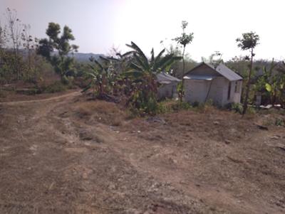 Gambar 5. Rumah Warga Pendatang