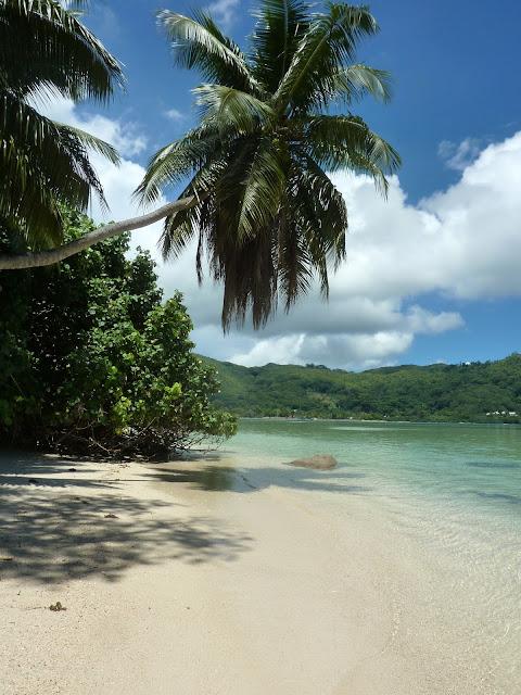 https://voyagestousrisques.blogspot.com/2018/02/mahe-les-plages-de-la-cote-sud.html
