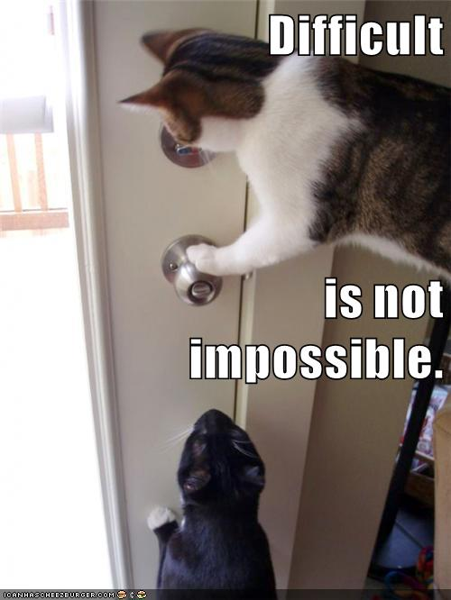 Growth Mindset & Feedback Cats: English: Difficult is not impossible. Blonde makeup is not impossible