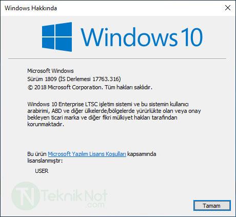 Windows 10 LTSC Türkçe iSO indir