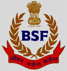 BSF ASI Steno Admit Card 2020
