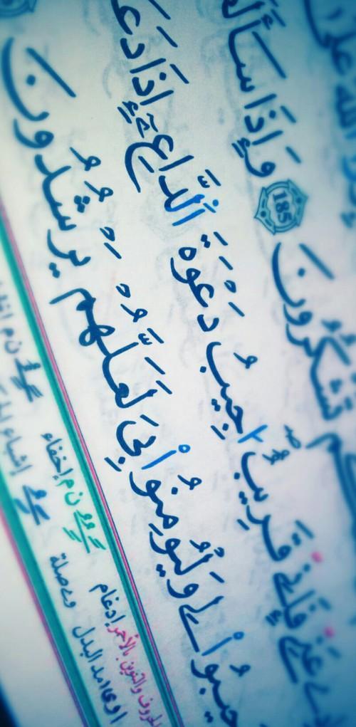 صور رمضان جديدة - خلفيات رمضان 2016
