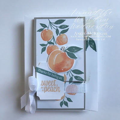 Weekly Digest - Week Ending May 15, 2021 | Nature's INKspirations by Angie McKenzie for Around the World on Wednesday Blog Hop; Click READ or VISIT to go to my blog for details! Featuring the Sweet as a Peach Bundle and Tasteful Labels Dies in the 2021-2022 Annual Catalog along with the Sweet Ice Cream Stamp Set which is part of the Sweet Ice Corner Bundle in the January-June 2021 Mini Catalog by Stampin' Up!®; #fancyfoldcards #stamping #aroundtheworldonwednesdaybloghop #awowbloghop #sweetasapeachbundle #sweetasapeachstampset #peachdies #tastefullabelsdies #20212022annualcatalog #naturesinkspirations #diystationery #diycrafts  #makingotherssmileonecreationatatime #diecutting #minislimfunfold #teabaggiftholder #cardtechniques #stampinup #handmadecards #stampincutandembossmachine #stampinupcolorcoordination #papercrafts