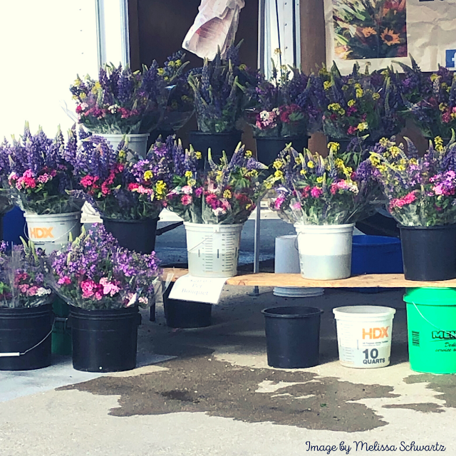 Glorious fresh flowers entice at the Omaha Farmers' Market.