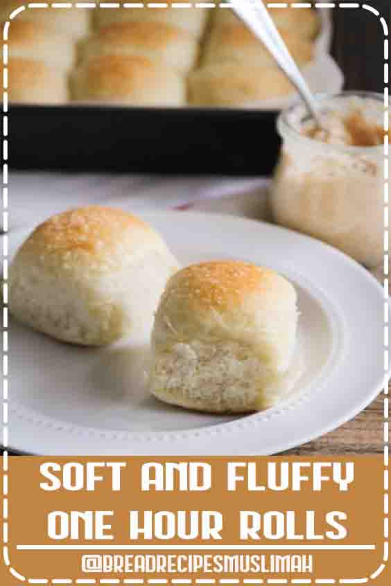 Soft and Fluffy One Hour Rolls