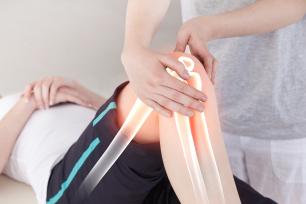Coleção Completa para Fisioterapeutas e Estudantes