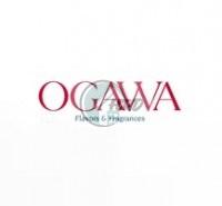 Ogawa Indonesia