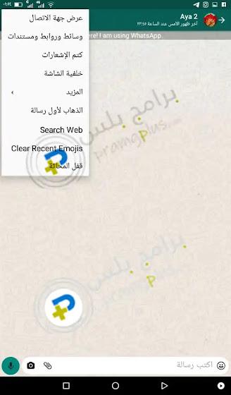 خصائص صفحات الدردشة OGwhatsapp