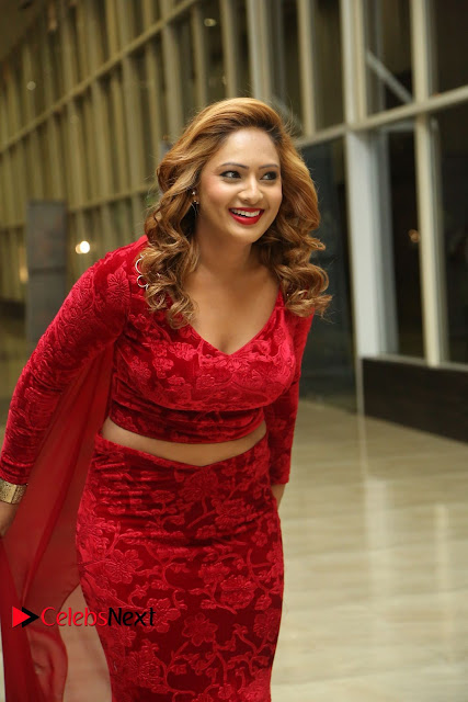 Nikesha Patel in a Tight Red Deep neck CHoli and Long Ghagra at Araku Road Lo Audio Launch