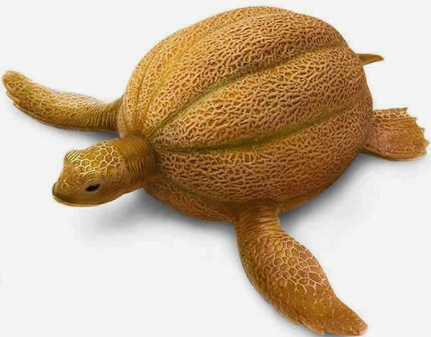 KREATIF 14 Gambar Kreatif Haiwan Dibuat Dari Sayur Dan
