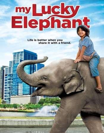 My Lucky Elephant 2013 Hindi Dual Audio WEBRip Full Movie Download