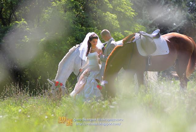 чернигов свадьба