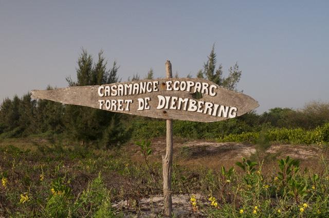 ECO PARC DE DIEMBERING : Parc, animaux, visite, tourisme, sauvage, oiseaux, LEUKSENEGAL, Dakar, Sénégal, Afrique