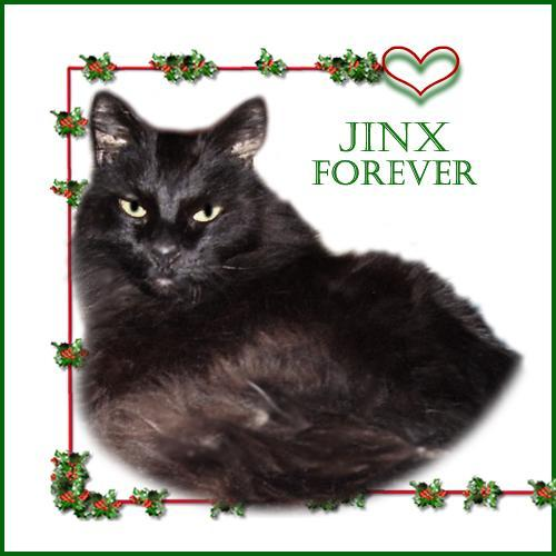Jinx Forever