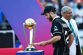 Williamson second captain to win Player of the World Cup award