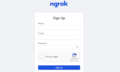 ngrok signup page