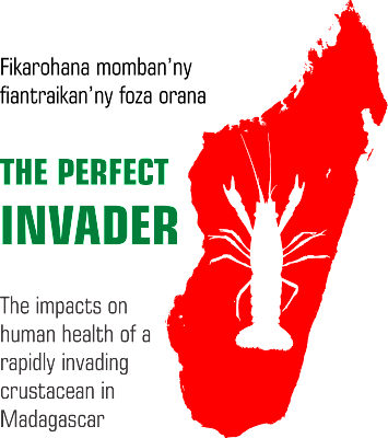 The Perfect Invader logo, version 6