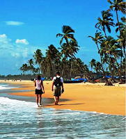 Go4places - hotels - Goa - Investment - padaniya