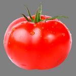 tomato in spanish