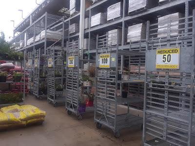 Lowe's plant clearance racks