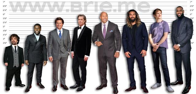 Peter Dinklage, Kevin Hart, Tom Cruise, Brad Pitt, The Rock, Jason Momoa, Bo Burnham, and LeBron James height comparison