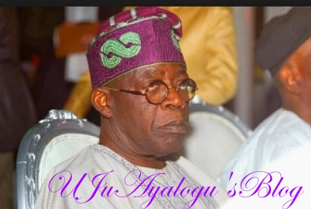 We Pity Tinubu - 'Buried' PDP Speaks From 'Grave'