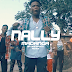 VIDEO | Meja kunta ft D Voice ft Nally - Madanga Ya Mke Wangu (Mp4) Download