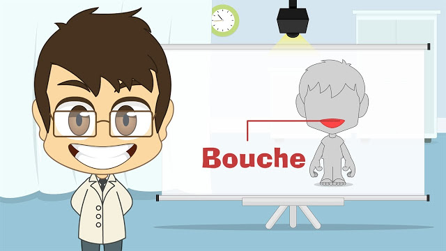 تعلم اعضاء جسم الانسان باللغة الفرنسية للمبتدئين